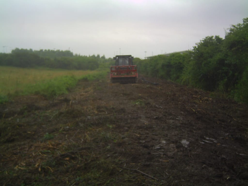 Tree clearance site after using tree mulcher